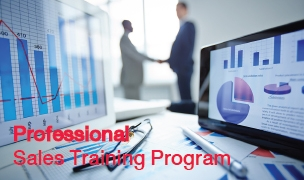 Professional Sales Training Program