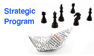 Strategic Management Program